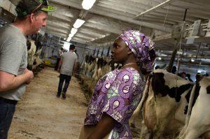 Livelihoods and Markets at Scotchill Holsteins