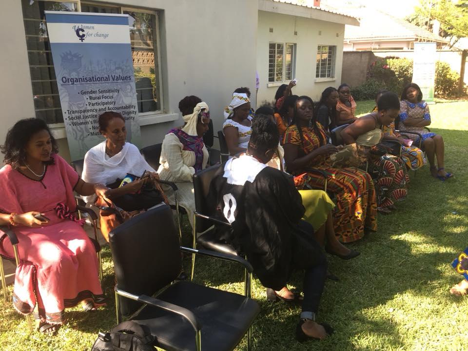 WLCD in Zambia5