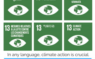 IDW: Climate Action for Human Rights through Education