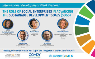 IDW Webinar: The Role of Social Enterprises in Advancing the Sustainable Development Goals (SDGs)